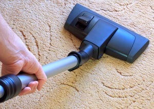 A carpet cleaning professional working in Seymour